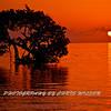 Florida Keys_07-26-12_0222