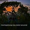 Florida Keys_07-26-12_0223