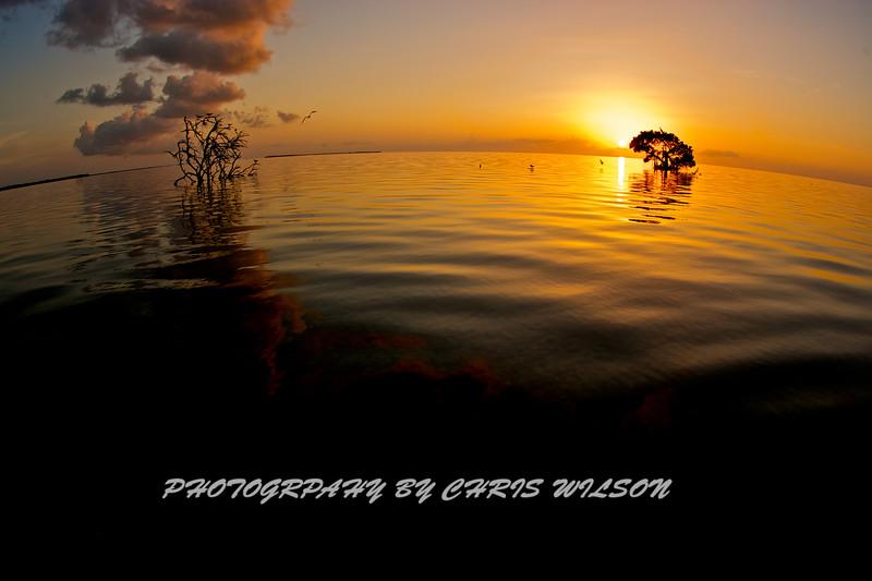 Florida Keys_07-26-12_0220