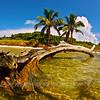 Florida Keys_07-29-12_0081