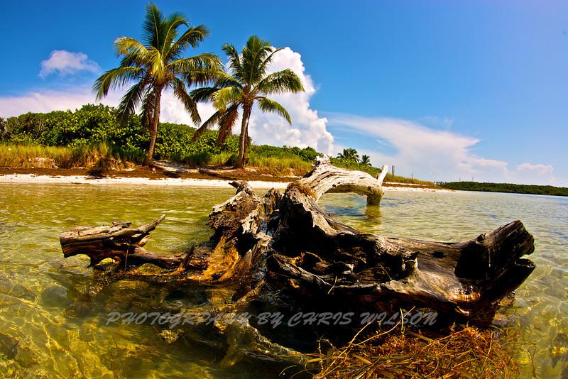Florida Keys_07-29-12_0644