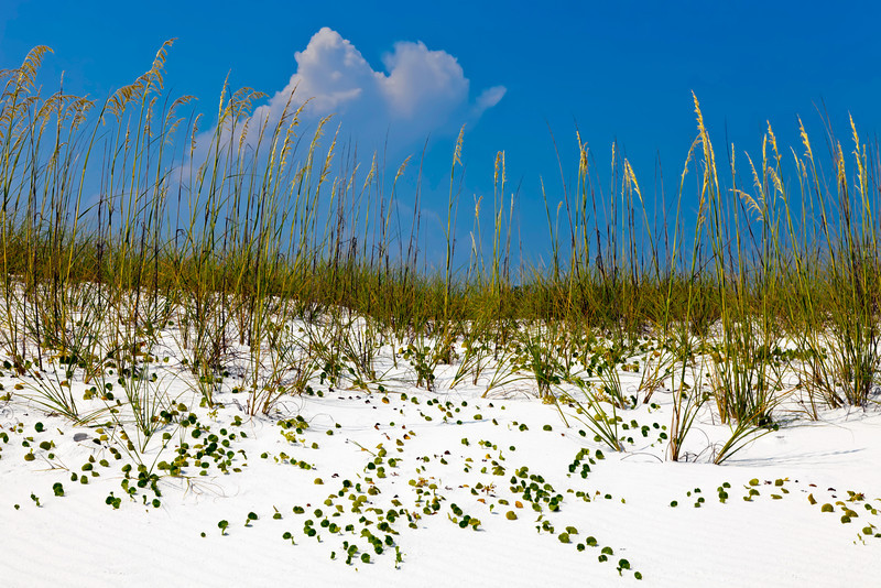 Fort Walton Beach, Florida