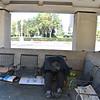 Homeless Person in Beautiful Newport Beach CA