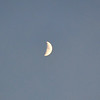 Quarter Moon in Early Evening in July