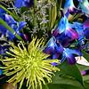 Flowers in Costa Mesa CA 200