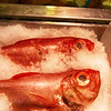 Fresh Fish at Whole Foods in Orange County California