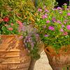 """WPP1567  """"Flower Pots"""""""