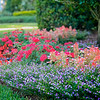 WPP2414  Flower Beds
