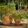 "WPP1572  ""Flower Pots on Park Avenue"""