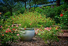 WPP2247  Rose Garden