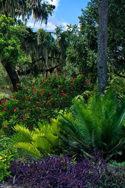 "WPP1539 ""Tropical Scene"""