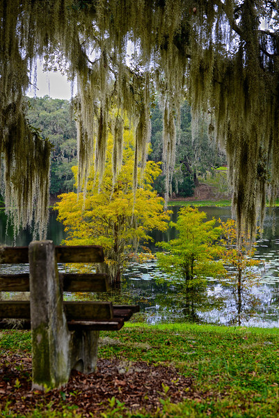 """WPP1522  """"Bench by the Pond"""""""