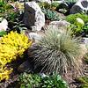 Beautiful Rock Garden in Vail Colorado