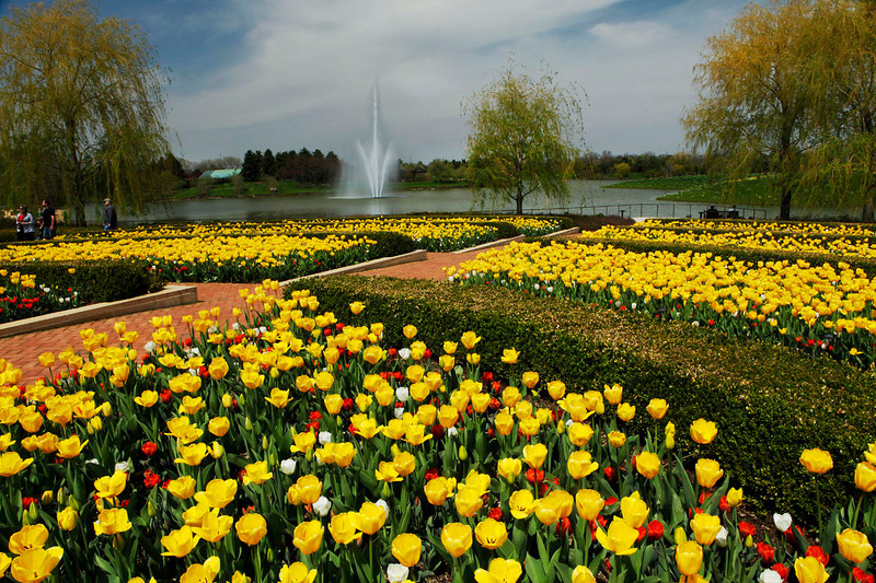 Spring Splash, Chicago Botanic Garden
