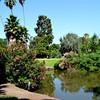 Los Angeles Botanical Gardens 11