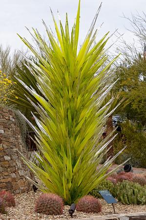 Chihuly Glass, Desert Botanical Garden, Phoenix