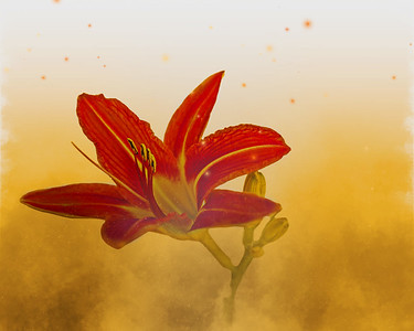 Hyperstorm Lily 2