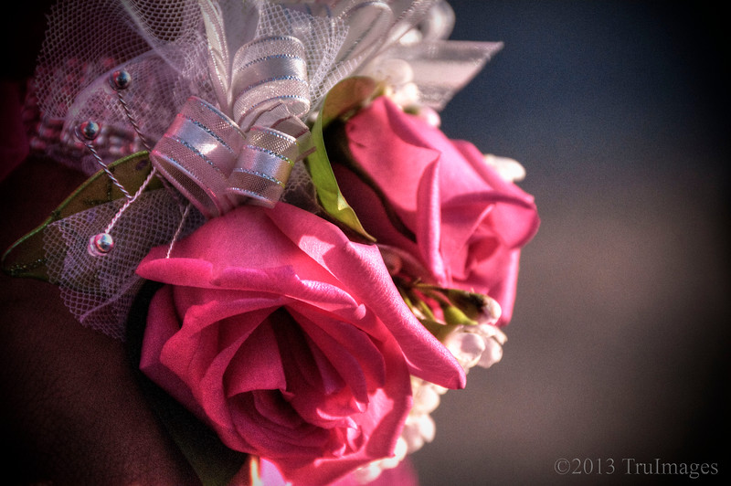 Apr 16<br /> The corsage<br /> <br /> For my 18 year old niece, this past Saturday was her senior prom! She wore a pink dress and this is a photo of her matching corsage... a very exciting day for her!!<br /> <br /> Thanks for the warm response to my simply green photo yesterday. To those who thought this was a lawn, this is young wheat grass in a field! I wish I could get my lawn to look that way!