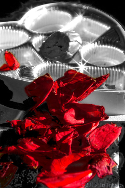 Feb 15<br /> Valentine's aftermath!<br /> <br /> Happy Friday!!<br /> We had a wonderful Valentines celebration, dinner, champagne, flowers, candy and dessert!<br /> <br /> Thanks for your comments and critiques!!