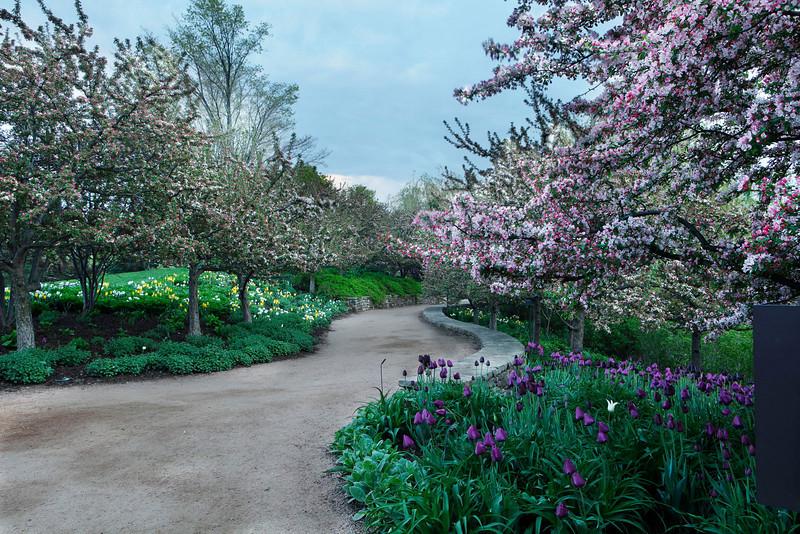 Spring path, Chicago Botanic Garden