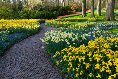 Follow the Reddish Brick Road... Keukenhof Gardens, The Netherlands