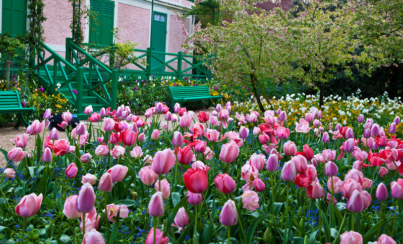 Pretty in Pink<br /> Monet's House, Giverny, France