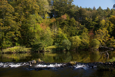 Autumn on Sunlaws, River Teviot