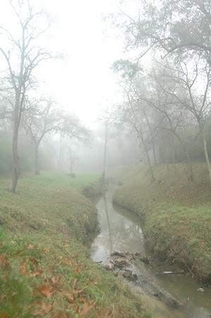 Foggy Boggy Photos