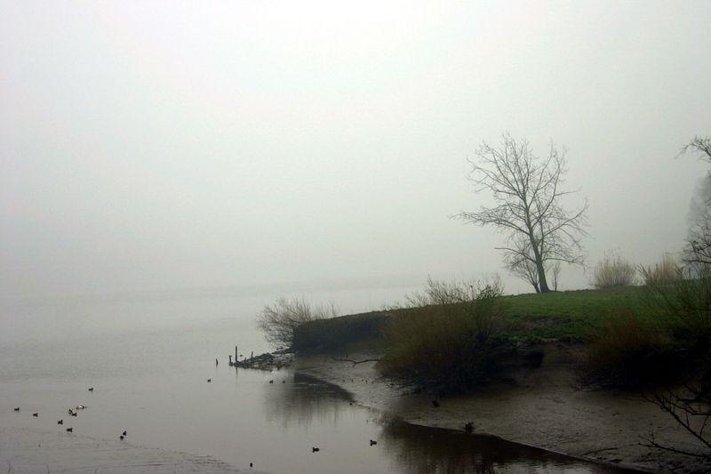 """Steendorp - De """"Kil"""" en Schelde"""