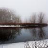 Foggy day 015-46