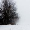 Foggy day 015-6