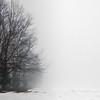 Foggy day 015-7