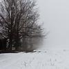 Foggy day 015