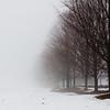 Foggy day 015-22