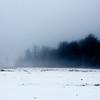 Foggy day 015-9
