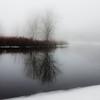 Foggy day 015-65