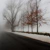 Foggy day 015-16