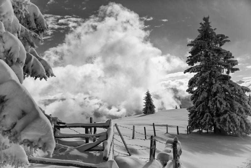 Wanderung Schwalbenwand im Schnee mit Andy Laura Max Joe! - tolle Sonne und Schnee! -