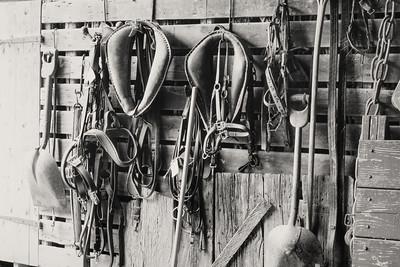 horse_tack-fpr+xt1-23
