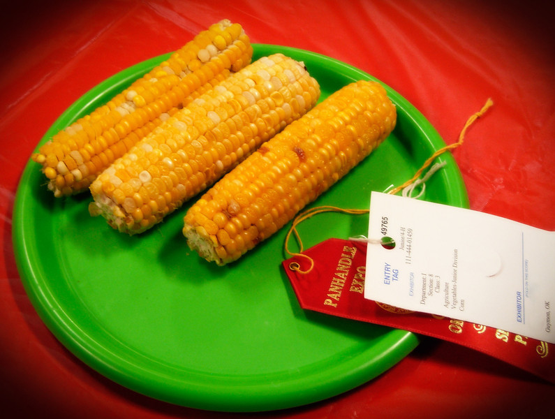 As American as prize-winning corn at the county fair.  This is in Guymon, Oklahoma.