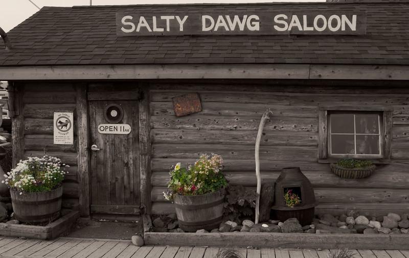 "Infamous watering hole in Homer, Alaska.<br />  <a href=""http://www.saltydawgsaloon.com/"">http://www.saltydawgsaloon.com/</a>"