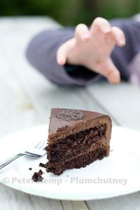 Comfort food.  Chocolate cake.  Child reaches to slice of cake