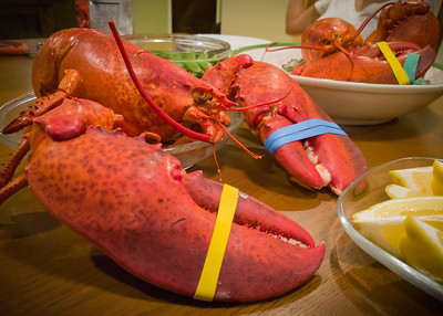 Finally, it's Lobstergiving (or, in our case, Lobstertaking)!