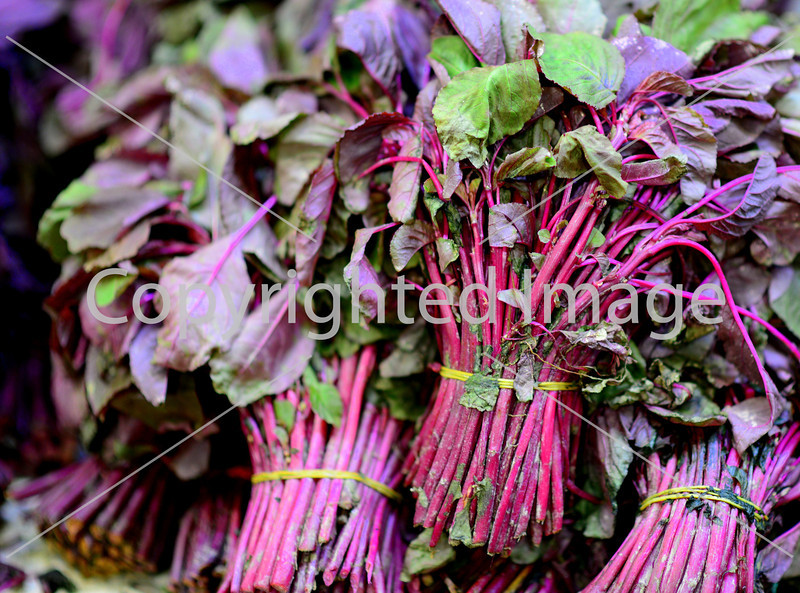 purple herbs leaves bunches