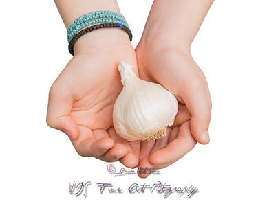 Hands Offering a Head of Garlic