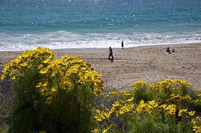 Ventura-Malibu_20080323_032
