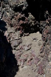 Lava_Beds_Natl_Monument032