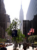 Empire_State_Building_003 copy