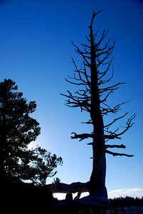 Silhouette, Bryce Canyon National Park, Utah