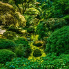 Stream | Japanese Garden | Portland